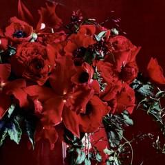 #44-Red Jasmine