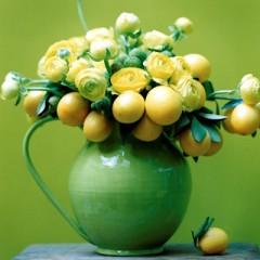#14-Lemonade